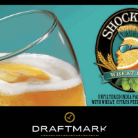 Shock Top Wheat IPA Draftmark