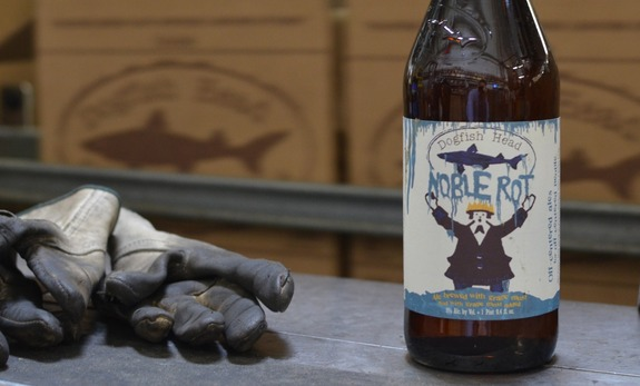 dogfish noble rot 575
