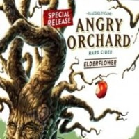 Angry Orchard Elderflower Hard Cider 6pack