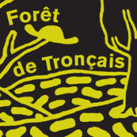 Mikkeller Forêt Tronçais Lightly Toasted French Oak Aged Barley Wine