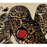Karl Strauss Four Scowling Owls ale