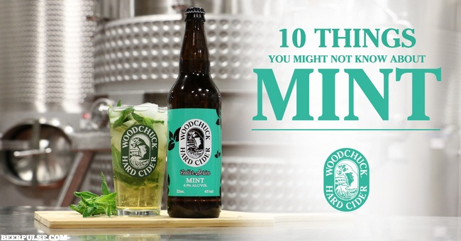 Woodchuck Mint Cider