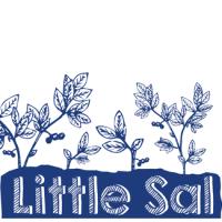 Allagash Little Sal Wine Barrel-Aged Ale