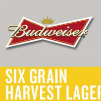 Budweiser Batch No. 63118 Six Grain Harvest Lager