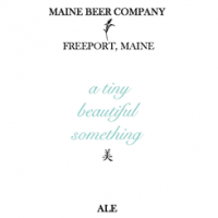 Maine A Tiny Beautiful Something Ale