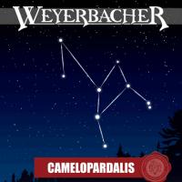Weyerbacher Camelopardalis Ale