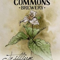 The Commons Trillium Sour Farmhouse Ale