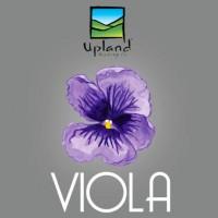 Upland Viola Sour Ale