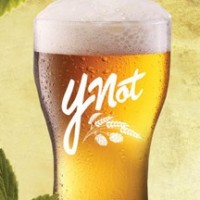 green flash ynot session ipa 768