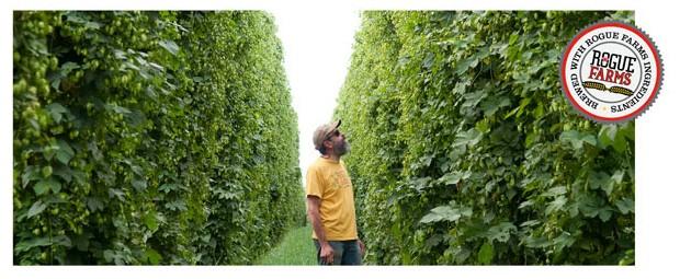 rogue farms hops