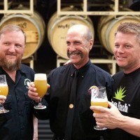 alpine and green flash acquired beerpulse