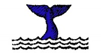 Cisco Whales Tale logo