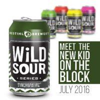 destihl wild sours cans square