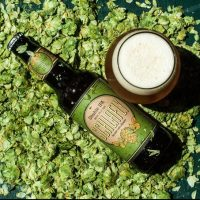 Schlafly Beer Double IPA pic BeerPulse II