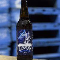 Elysian Bifrost Winter Pale Ale BeerPulse