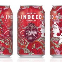 Indeed Strawberry Fields cans BeerPulse
