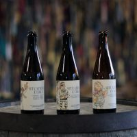 Monday Night Brewing Situation Ethics Bottles BeerPulse