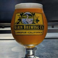 Marin F.B.I.P.A glass BeerPulse