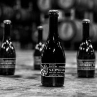 Stone Mission Warehouse Sauvignon Sour Ale bottle BeerPulse